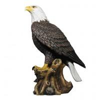 1hd19094-eagle