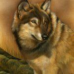 RL-WolfPortrait-Blanket-Queen